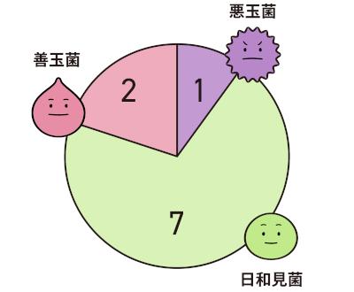 腸内細菌の割合